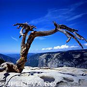 7 atractii turistice de vis in California