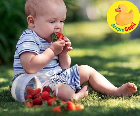 15 retete cu capsuni pentru bebelusi bogate in vitamina C