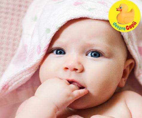 Cat mananca bebelusul de 4 luni?