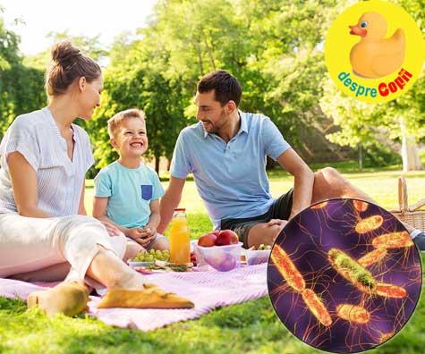 Sezonul gratarelor, picnicurilor si a salmonellei. Iata care sunt simptomele infectiei si cum ne protejam familia.