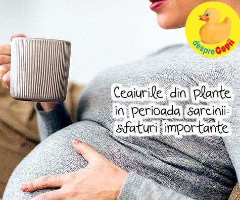 Ceaiurile din plante in perioada sarcinii: sfaturi importante