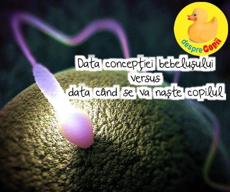 Despre data conceptiei si data cand se va naste copilul - iata cum se calculeaza cel mai exact