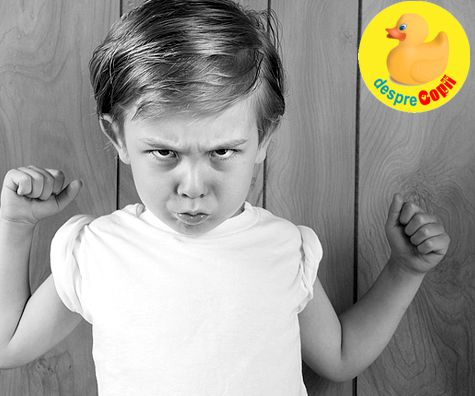 Copilul agresiv: cauze, prevenire si reactii