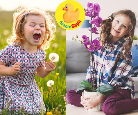 Copilul papadie si copilul orhidee - iata de ce sunt asa de diferiti. Tu ce fel de copil ai?