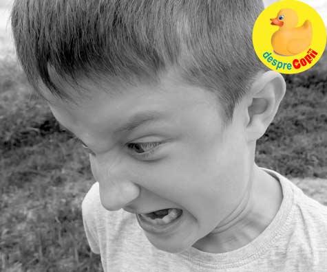 Cand copilul devine violent. Cum procedam si ce principii abordam - sfatul psihologului