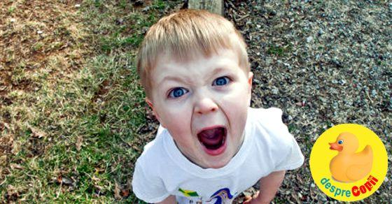Ce facem cand copilul tipa si urla