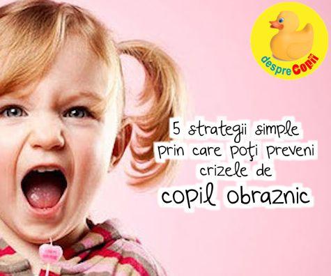 5 strategii simple prin care poti preveni crizele de copil obraznic