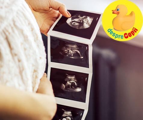 Cu cine va semana oare bebelusul meu? -  jurnal de sarcina