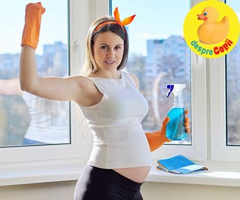 7 faze ale instinctului de cuib in timpul sarcinii