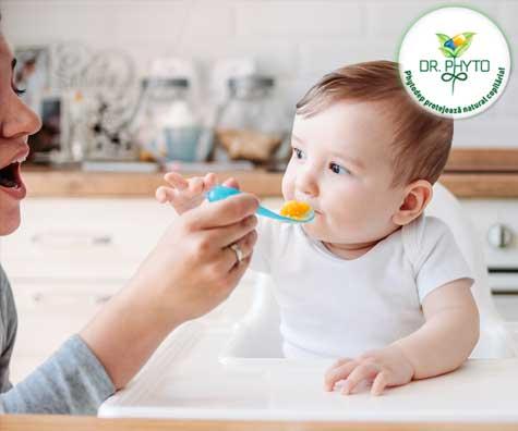 Importanta digestiei la bebelusii diversificati
