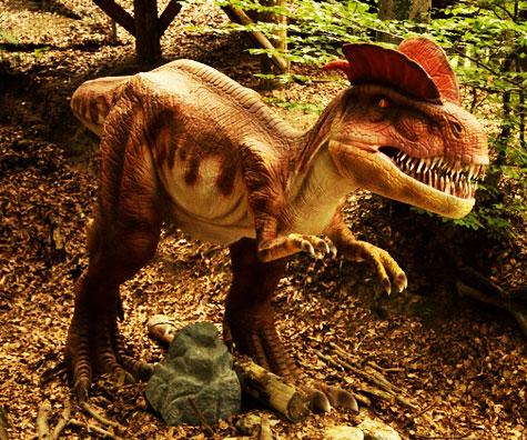 Dinozauri si distractie pentru toti la Dino Parc Rasnov