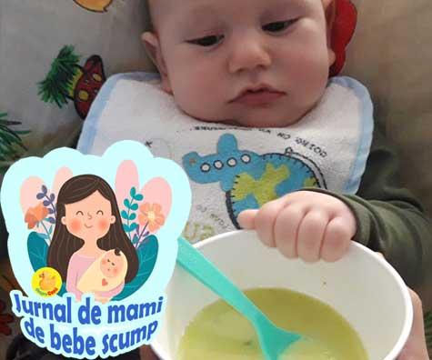 7 piureuri pentru bebe - asa le fac eu - jurnal de mami de bebe scump