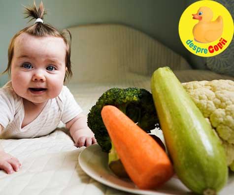 Dovlecelul in alimentatia bebelusului: siguranta, valoare nutritionala si beneficii