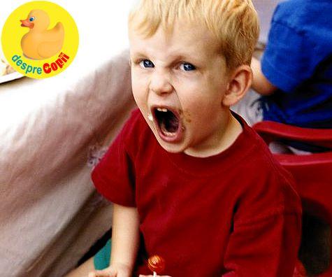 Regula celor 5 C in disciplina copilului