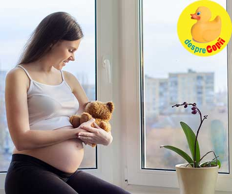 Reactia familiei la aflarea sarcinii si alegerea numelui, ganduri si vise - jurnal de sarcina