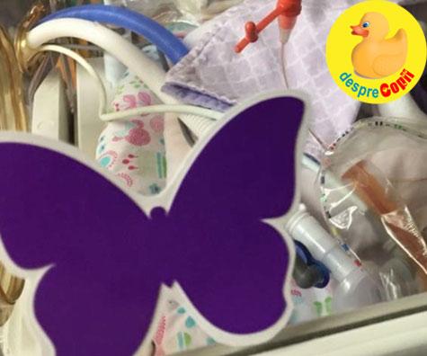 Mi-am purtat bebelușul timp de 7 luni știind că va muri, astfel încât să-l pot salva pe celalalt copil - povestea fluturasilor mov