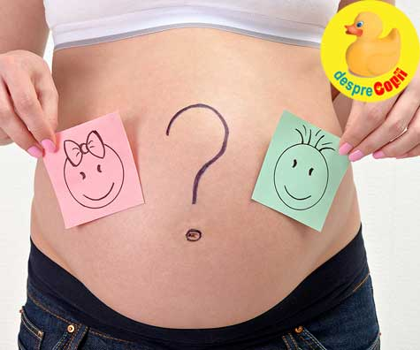 Ecografia de trimestrul II si sexul bebelusului in saptamana 22 - jurnal de sarcina