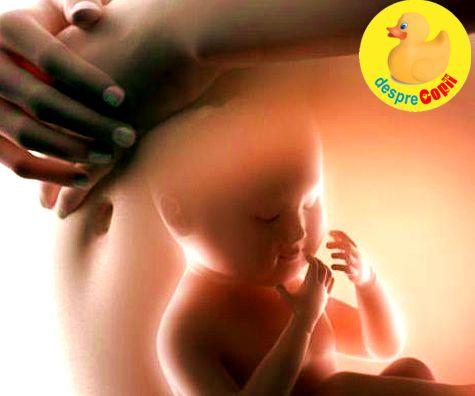 In burtica mamei: Iata cum se formeaza preferintele culinare ale copilului inca din timpul sarcinii