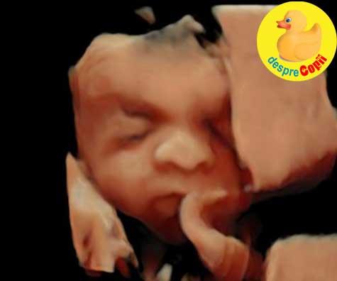 O noua intalnire cu fetita noastra la ecografie - jurnal de sarcina
