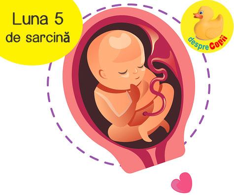 Luna 5 de sarcina: bebelusul are acum amprente iar foamea da tarcoale mamicii
