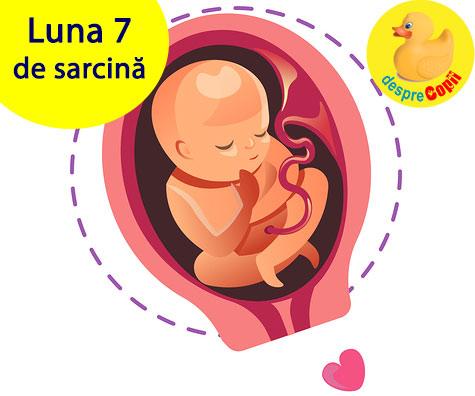 Luna 7 de sarcina: burtica creste mult iar bebelusul poate asculta muzica