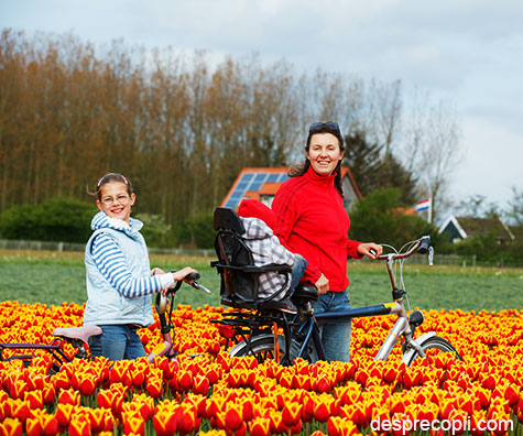 Mamele olandeze sunt cele mai relaxate mame din lume
