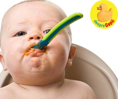 Din borcanas sau din blender? Care e cea mai buna papica pentru bebelus? Iata variantele si sfatul medicului.