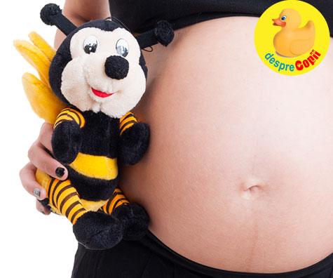 La 6 saptamani de sarcina: mica albinuta cu sufletel, centrul universului nostru - jurnal de sarcina