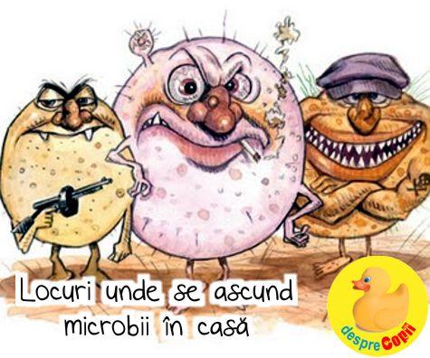 Locuri unde se ascund bacterii si virusuri in casa