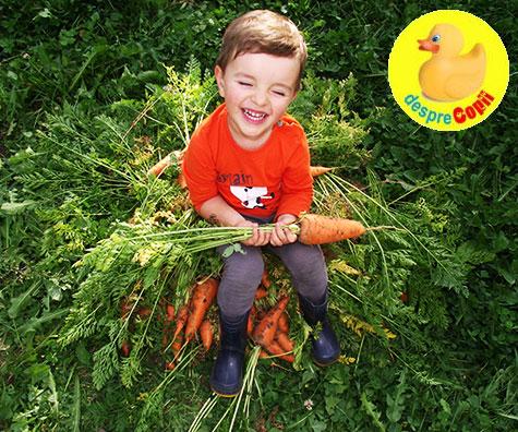 Cum ii invatam pe cei mici sa aiba grija de natura?