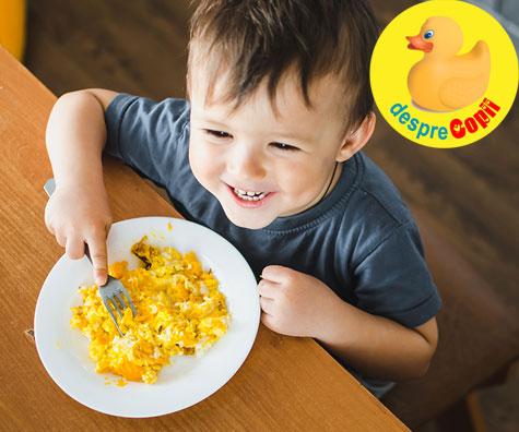 Omleta cu galbenus si branza de vaci - reteta pentru bebelusi