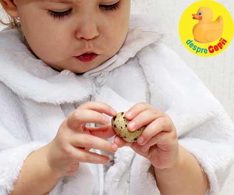Cand pot manca bebelusii oua de prepelita? Iata ce contin si cum le putem oferi bebelusilor.