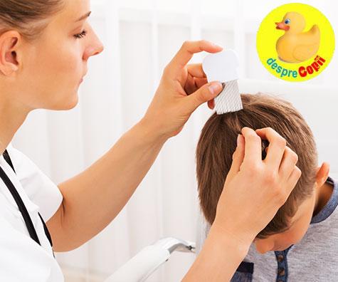 Care sunt riscurile folosirii unor metode traditionale pentru eliminarea paduchilor de cap