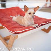Mobila de lounge pentru animalutele noastre preferate