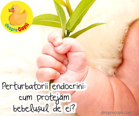 Perturbatorii endocrini – cum protejam bebelusul de ei?