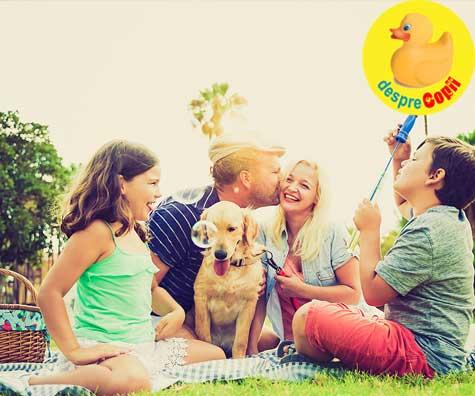 Nu lasa vara sa treaca fara un picnic in familie! Idei de gustari si activitati distractive