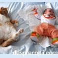 Cand pisica e geloasa pe noul nascut