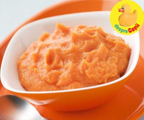 Piure de caise cu pui si cartof dulce - reteta pentru bebelusi