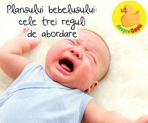Plansului bebelusului: cele trei reguli de abordare