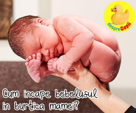 Cum sta bebelusul in burtica mamei? Iata in ce pozitie
