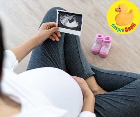 Prima ecografie si anuntarea parintilor ca vor fi bunici - jurnal de sarcina