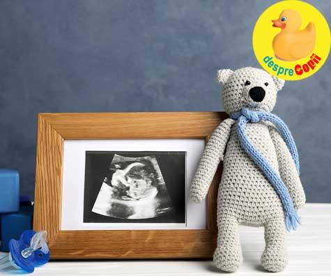 Primul ecograf din sarcina - jurnal de sarcina