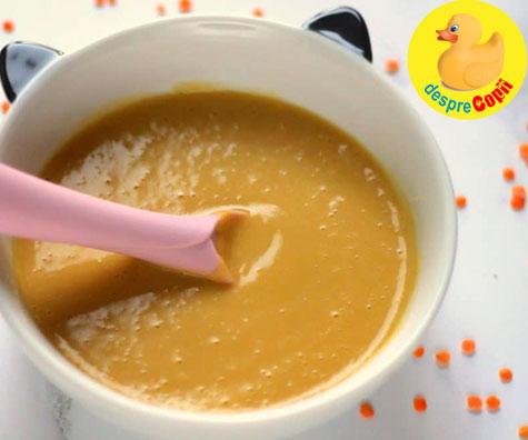 Prima supa a bebelusului - cand si ce ingrediente poate avea
