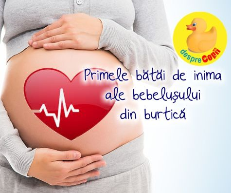 Primele batai de inima ale bebelusului din burtica