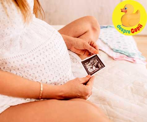 Primele doua etape ale sarcinii: trimestrul I & II de sarcina - jurnal de sarcina