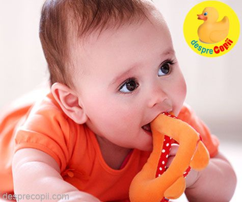 Provocarea primilor dinti ai bebelusului