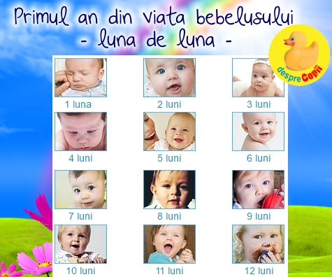 Primele 12 luni ale bebelusului: ghid pe luni