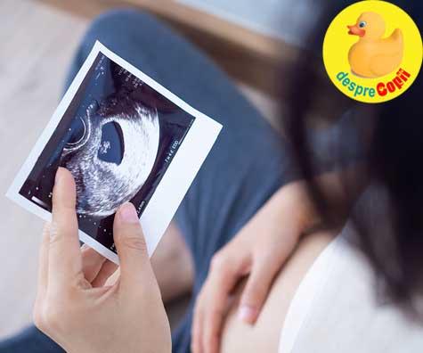 Emotii de sarcina in primul trimestru - jurnal de sarcina