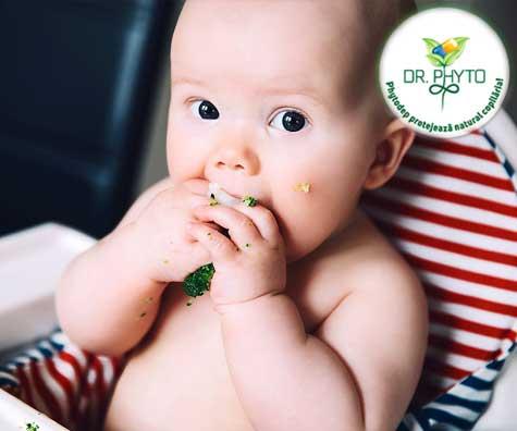 Ai inceput diversificarea si bebelusul are probleme digestive? Iata cum le poti ameliora