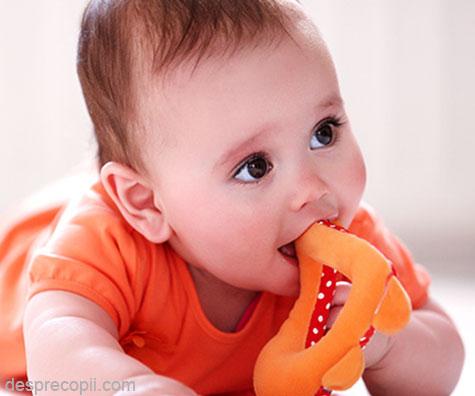 Provocarea primilor dinti